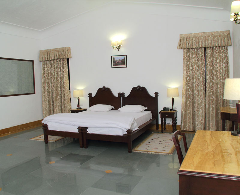 Udaipur Group Packages
